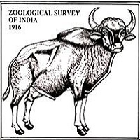 ZSI Zoological Survey of India Recruitment