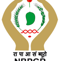 NBPGR Recruitment 2020 for Research Associate/Project Associate | 12 Posts | Last Date: 15 June 2020