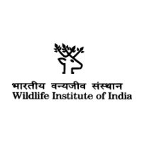 WII Recruitment 2021 for Project Assistant | Last Date: 17 August 2021