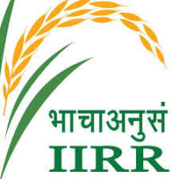 IIRR Recruitment 2021 for RA/ JRF/Technical Assistant | 11 Posts | Last Date: 30 April 2021